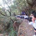 山登り(2)